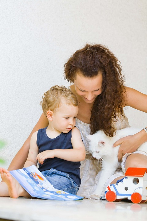 how to introduce pets to a baby